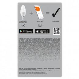SricamWebcam Sricam SH017 full HD 2MP