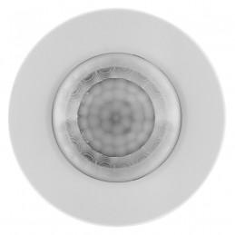 CRUCIAL P2 500GB SSD, M.2 2280, PCIe Gen3 x4, Read/Write: 2300/940 MB/s, Random Read/Write IOPS: 95K/215K