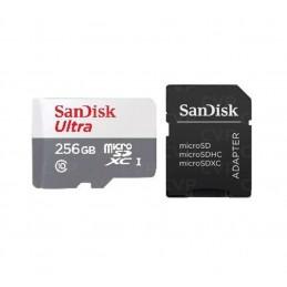 PT SSD 256GB M2 2280 P300P256GM28